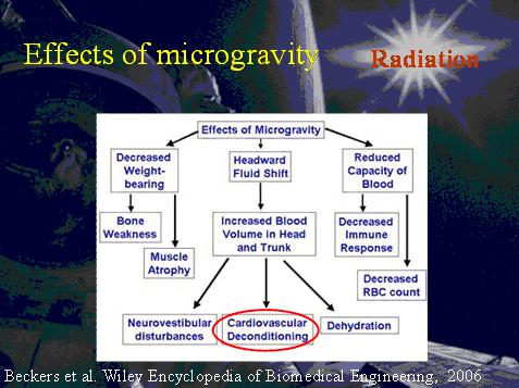 Effects of microgravity